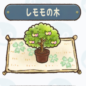 レモモの木